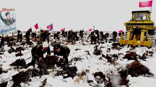 'Reclaiming' the Sepho Tableland at Christmas 2012 | ©Rodong Sinmun