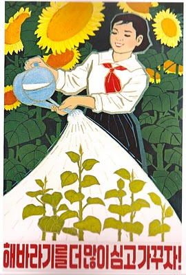 """Let's plant and raise even more sunflowers!"" 