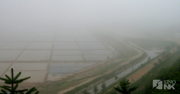 fog-over-paddies-dprk