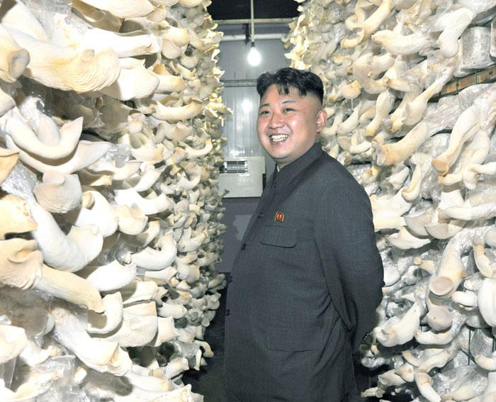 Close encounters of the Fungal variety: Kim Jong-un at Posong Mushroom Farm. | Image: Rodong Sinmun