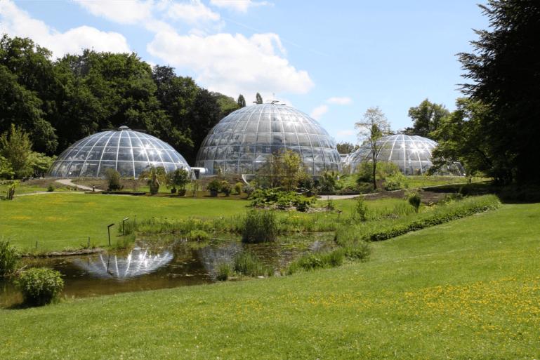 Image result for 苏黎世植物园(Zurich Botanic Garden