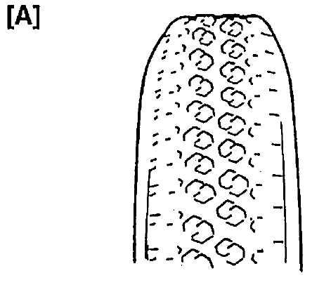 5.2.1 Диагностика шин Сузуки Гранд Витара