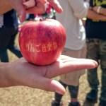 りんご音楽祭のりんご2016