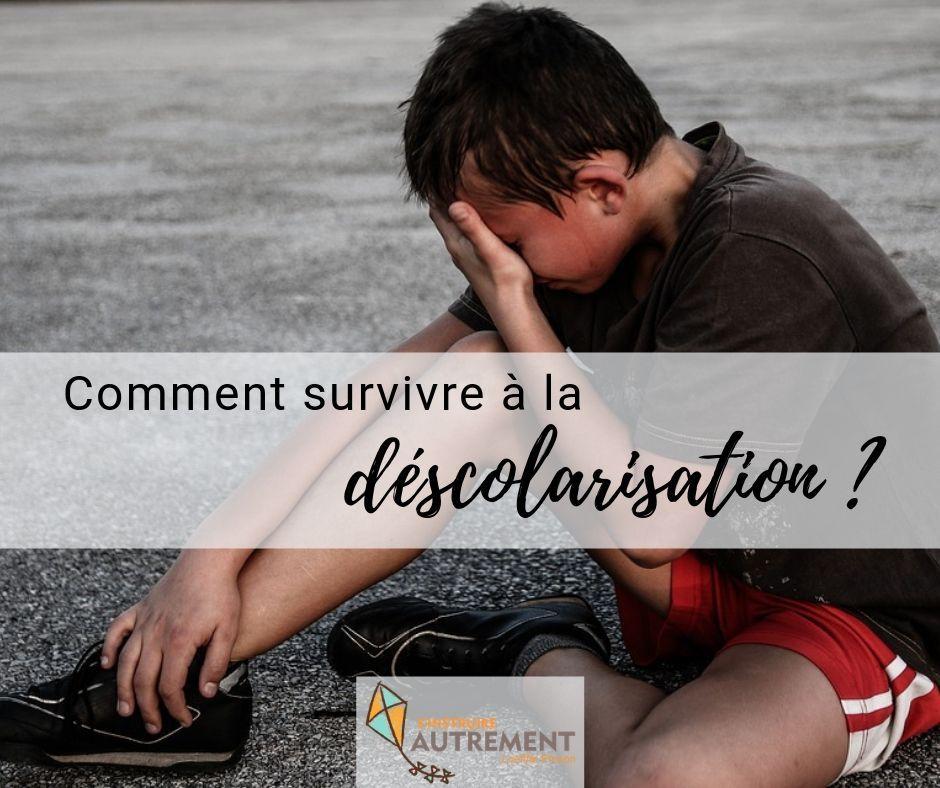 Déscolarisation : comment y survivre ?