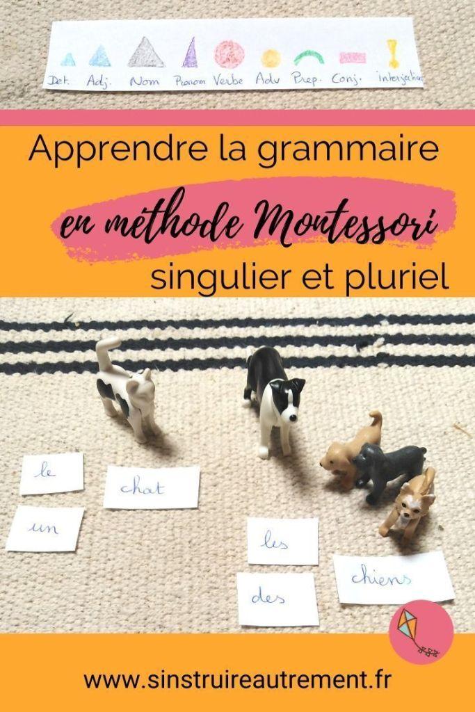 Apprendre la grammaire Montessori, c'est très simple et amusant ! Je te montre ici comment présenter le genre et le nombre, ainsi que toutes les natures de mots.