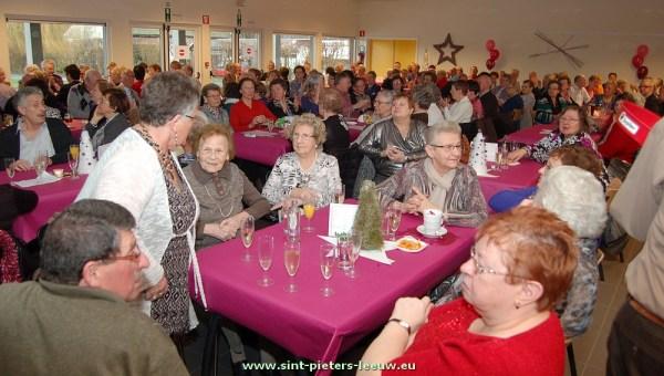2014-01-16-nieuwjaarsbal-dienstencentra_03