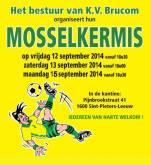 2014-08-15-flyer-mosselkermis