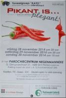 2014-11-30-affiche-kato_pikantisplezant