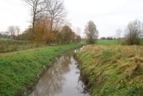 2014-11-16-zuunbeekwandeling_07