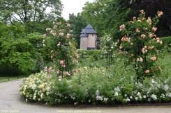 2017-06-09-VISmandel_Rosa-Coloma_Roos (7)