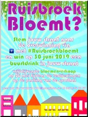 2019-06-11-affiche-Ruisbroek-Bloemt_02.jpg