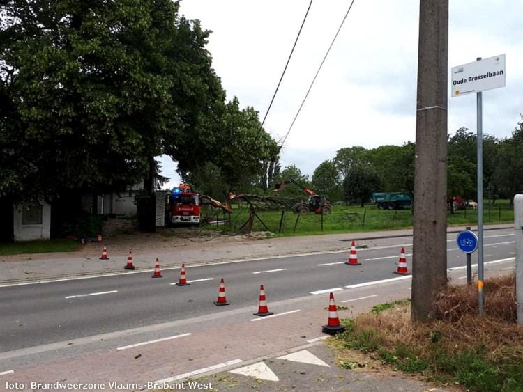 2019-06-08-boomophuis-electriciteitskabels