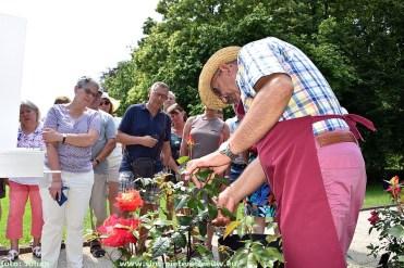 2019-06-23_1ste_Rozenfestival_Sint-Pieters-Leeuw (20)