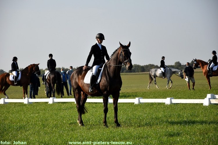 2020-09-19- Provinciaal kampioenschap dressuur LRV Vlaams-Brabant (1)
