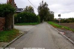 2020-10-30-kruispunt Edward de Baerdemaekerstraat en Beukenlaan (3)
