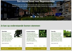 2020-12-01---stemming-boom_Koning-Albertplein