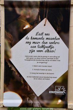 2020-12-26-wensbomen_SPL (4)