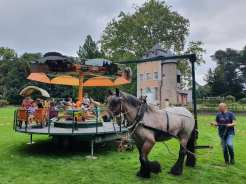 2021-09-26-trekpaarden_Coloma_03