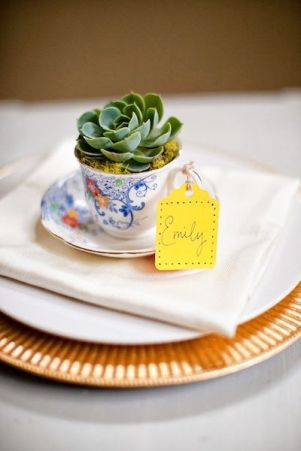 Any small plant can be planted in a cup as a gift.