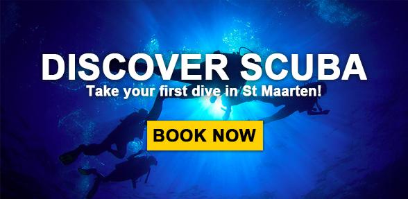 Discover Scuba Diving in St Maarten