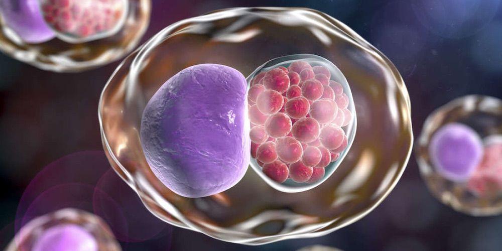enfermedades de transmisión sexual clamidia