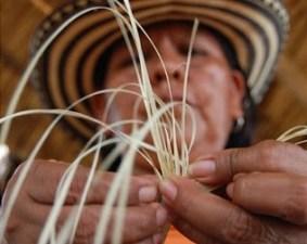 Tradiciones colombianas cañaflecha