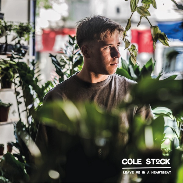 Cole Stock - Leave Me in a Heartbeat