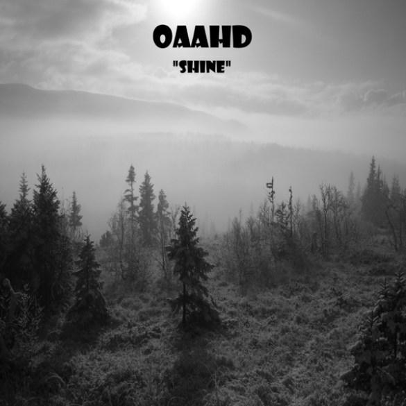 One and a half dog-Shine
