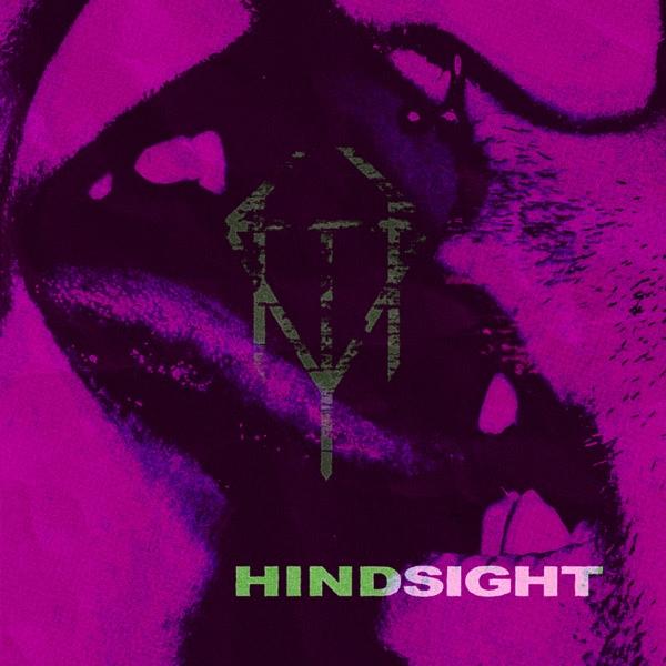 Kite Thief-Hindsight