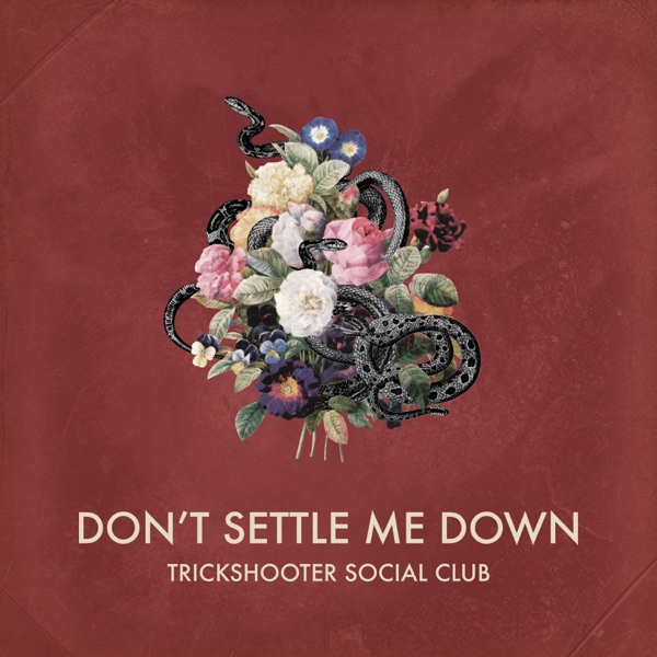 Trickshooter Social Club - Don't Settle me Down