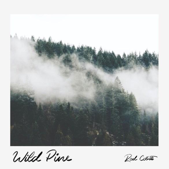 Rod Coote - Wild Pine