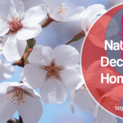 Best Natural Sinus Decongestant Home Remedy