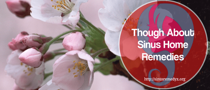 sinus home remedies,sinus infections home remedies,sinus relief home remedies
