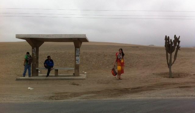 DÍA 23: LIMA, Pachacámac