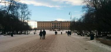 Oslo palace.