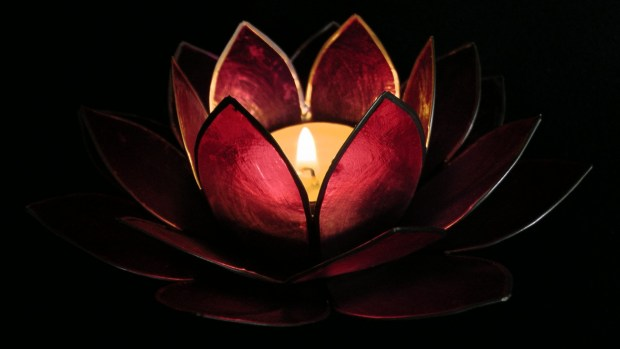 lotus-flower-candle-holder
