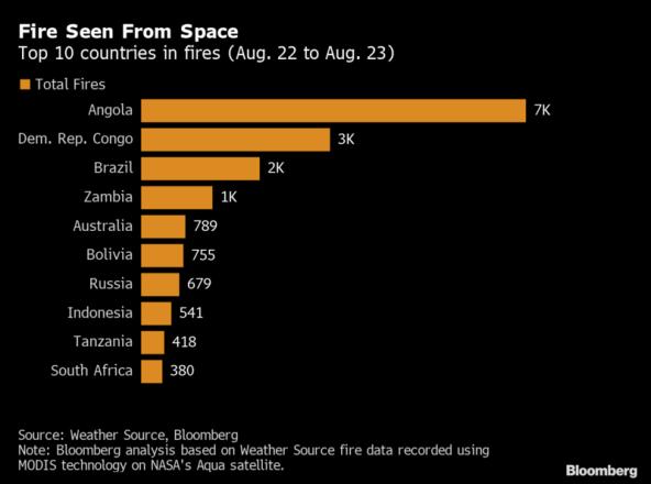 Z Syberii do Amazonii po Afrykę