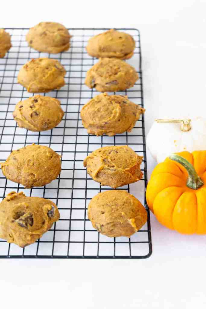 Easy Pumpkin Chocolate Chip Cookies | Sip and Spice