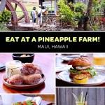 See the Mill House Maui menu for lunch at the Maui Tropical Plantation Tour Pineapple farm Hawaii
