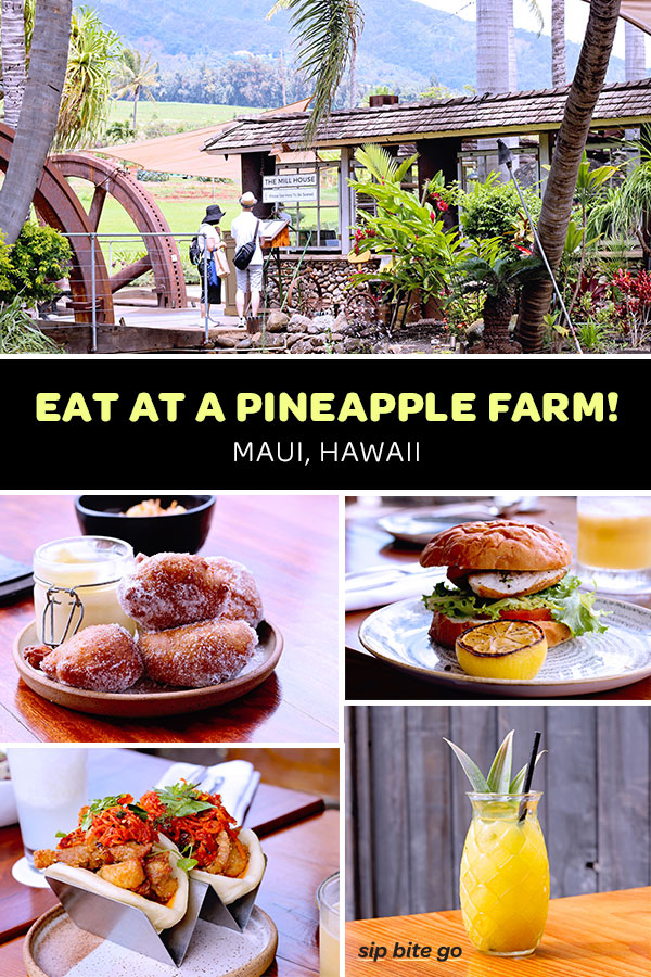 Top places to eat in Maui include the Maui Tropical Plantation. Take the Pineapple farm tour, then head to the Mill House for a delicious Hawaiian lunch! Located in Central Maui Hawaii, this is a must see Maui attraction. #maui #hawaii #pineapple #travel