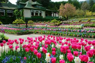 Tempat wisata Victoria