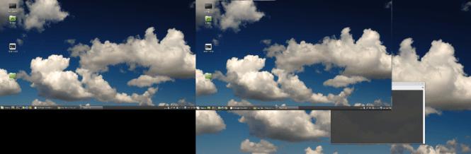 screenshot of the bug