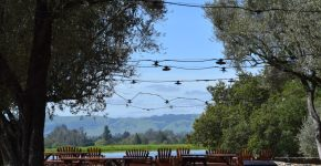 Wines & Views to Gawk At In Sonoma County, CA