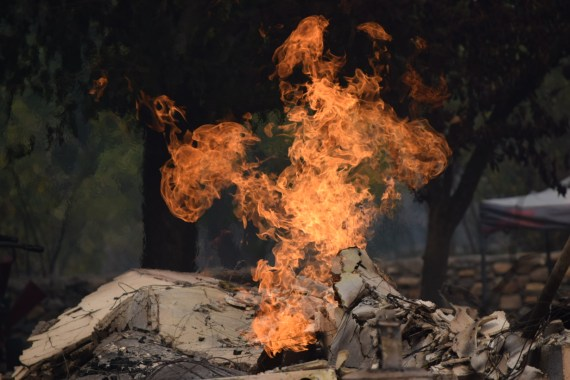 Sonoma County Fires in California – How To Help