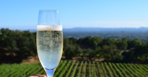 Paradise Ridge Winery Answers YOUR Questions