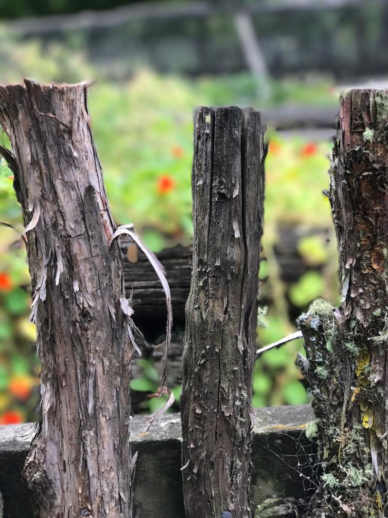 wharekauhau-gardens-manooka-wood-fence