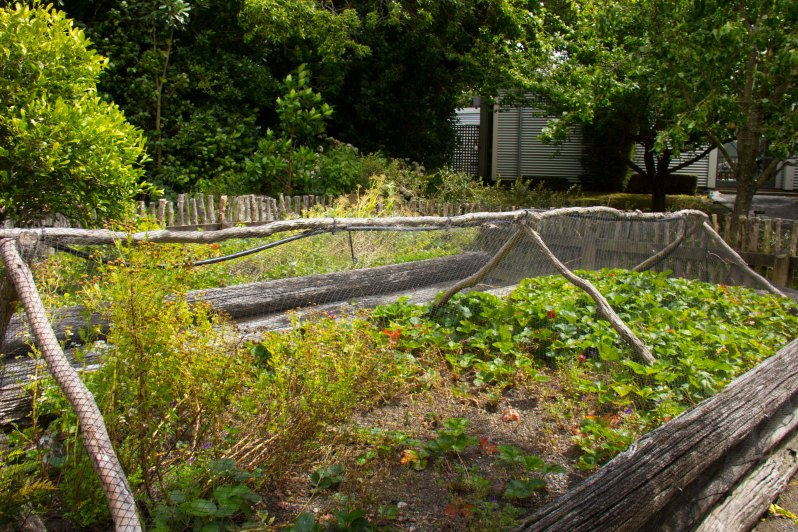 Wharekauhau Herb Garden.JPG