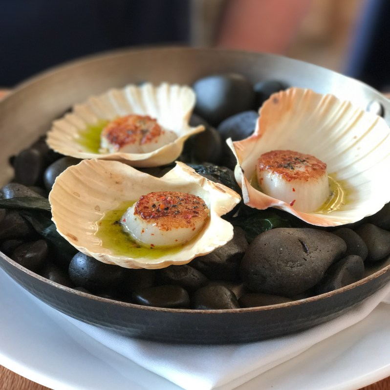 whitebait-restaurant-wellington-new-zealand-scallops