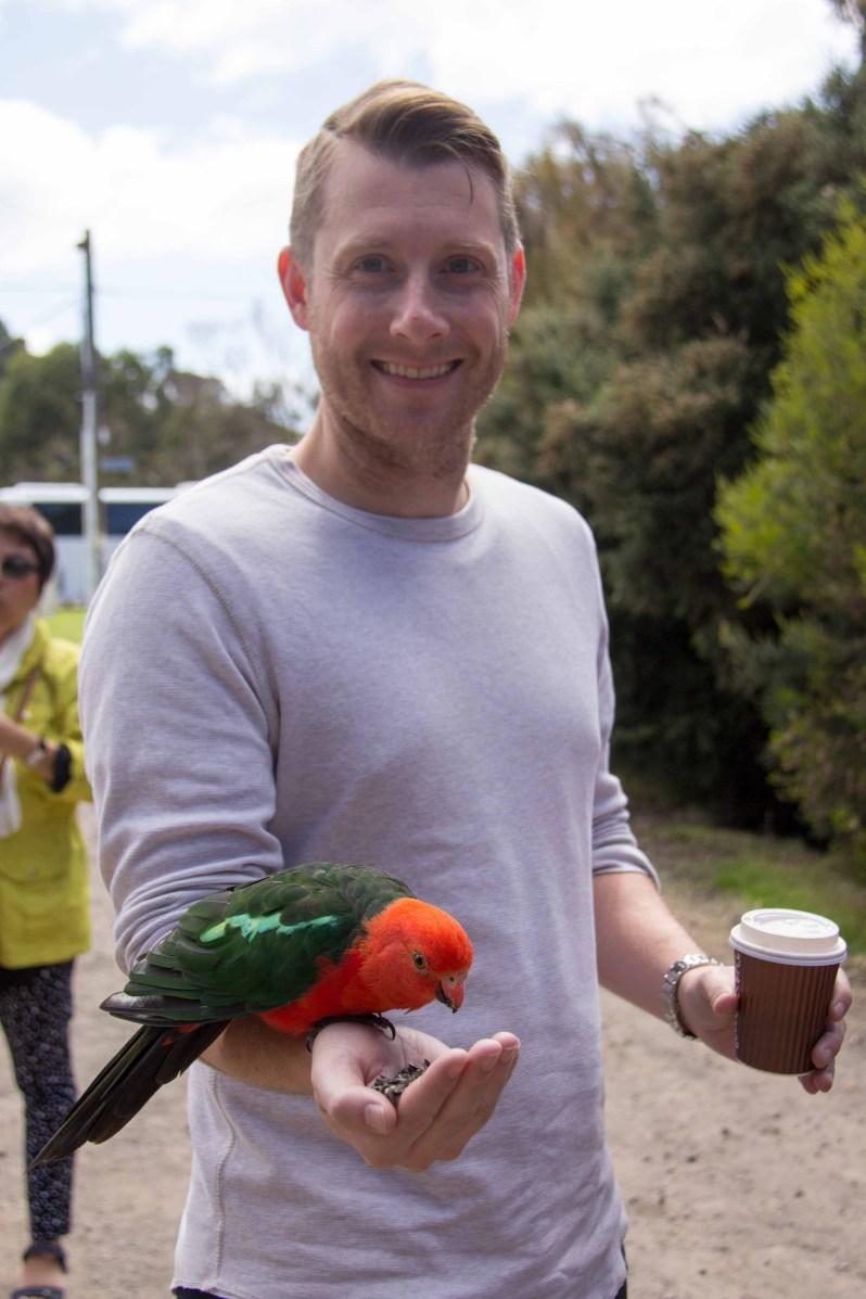 Kennett River Birds 2.jpg