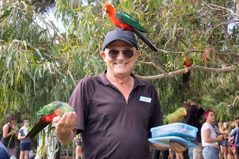 Kennett River Birds 3.jpg